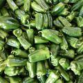 鲁北绿色蔬菜