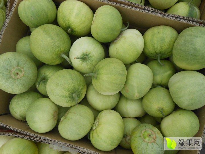 山东省青岛市莱西市 李权庄甜瓜种植区 地图 3月到10月上市 品种