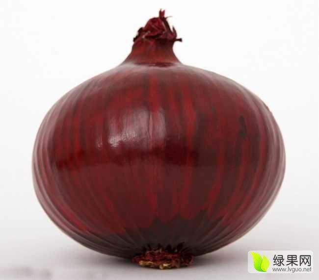 丰县华通蔬菜价格合作社-平菇专业网洋葱大的比头大图片