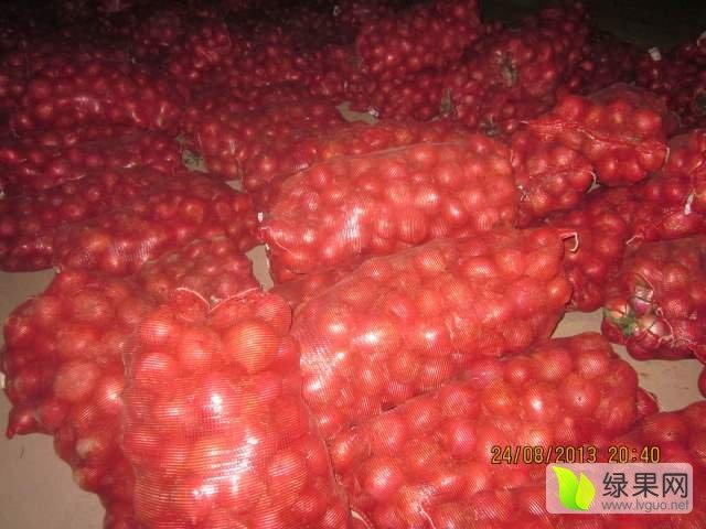 供应:美容:金乡蛋清洋葱黄皮功效-大量有货冷库粉红皮供应山楂图片