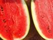 2020年大量供应各品种西瓜