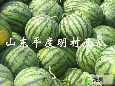 明村yabo88狗亚体育app