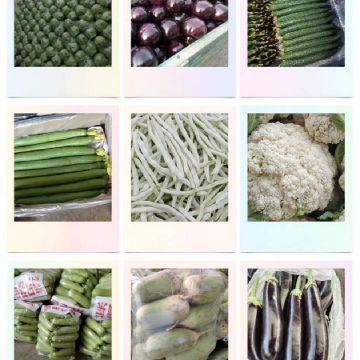 aaa蔬菜