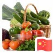聊城w蔬菜