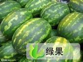 内蒙古达拉特旗新红宝:白泥井刘瑞
