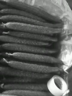 中农106黄瓜价格
