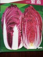 紫白菜价格