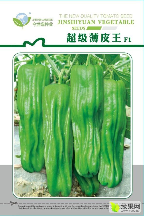 今世缘种业 超级薄皮王辣椒种子聚焦市场