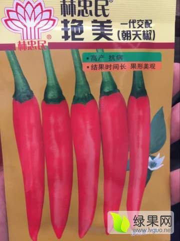 河南商丘林忠民艳美总经销、商蔬种业艳红种子
