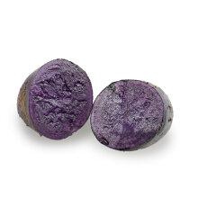 山東萊陽黑金剛土豆屬中早熟型