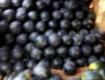 常年代收长花瓜,花圆瓜,黑无籽等西瓜!