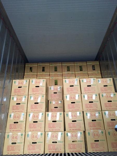 东莞市长征果品贸易有限公司水果代销批发配送