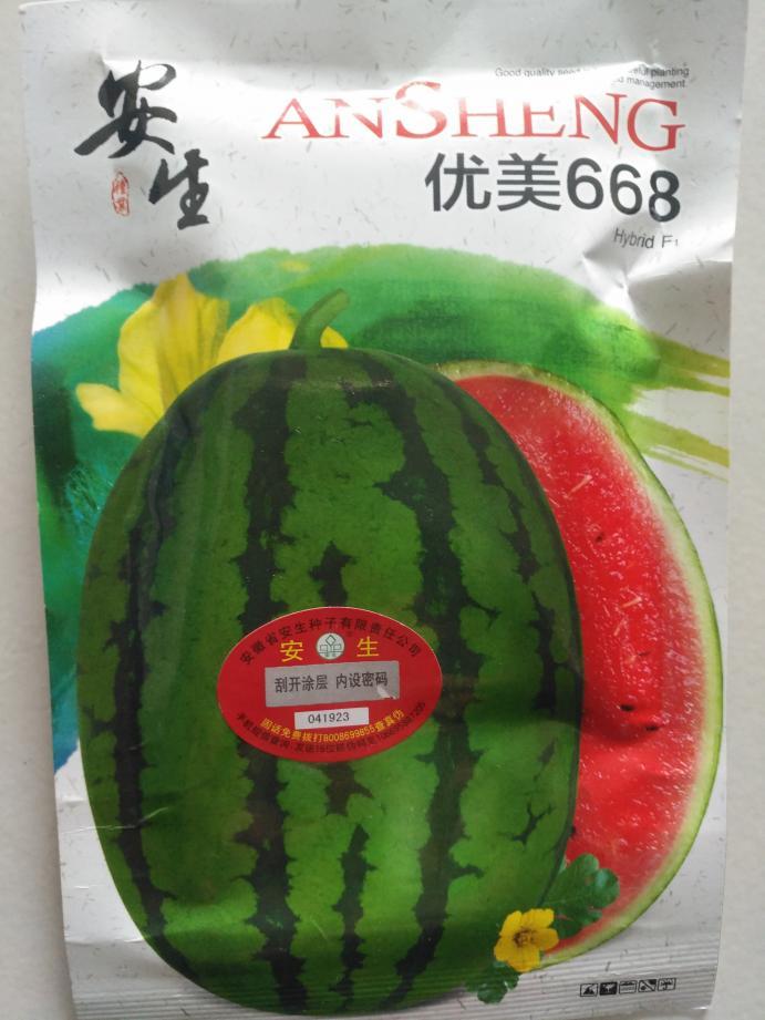 昌乐安生优美668甜王系列