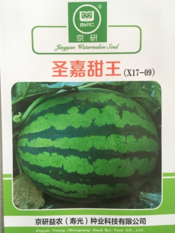 寿光甜王系列西瓜种子