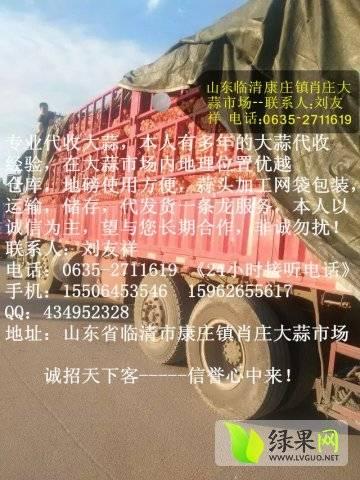 山东临清大蒜市场7月4号最新报价