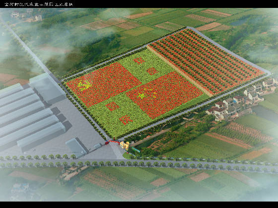 2018济源辣椒 3000亩标准化辣椒种植基地