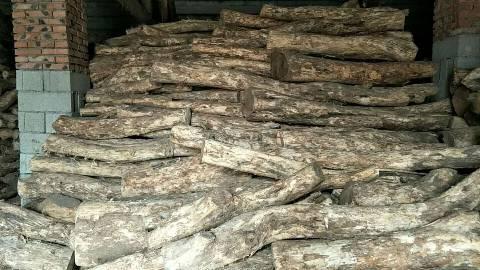 山东菏泽主要产品有桂花树苗、枣木板材