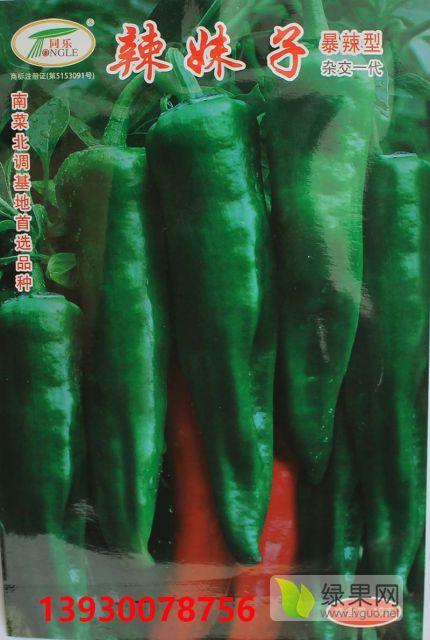 辣妹子粗牛角椒尖椒羊角椒泡椒辣椒种子