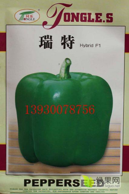 瑞特菜椒高产甜椒辣椒种子