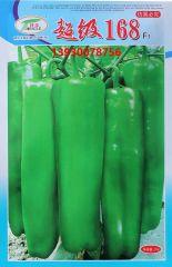 超级168大牛角椒大青椒长灯笼椒高产辣椒种子