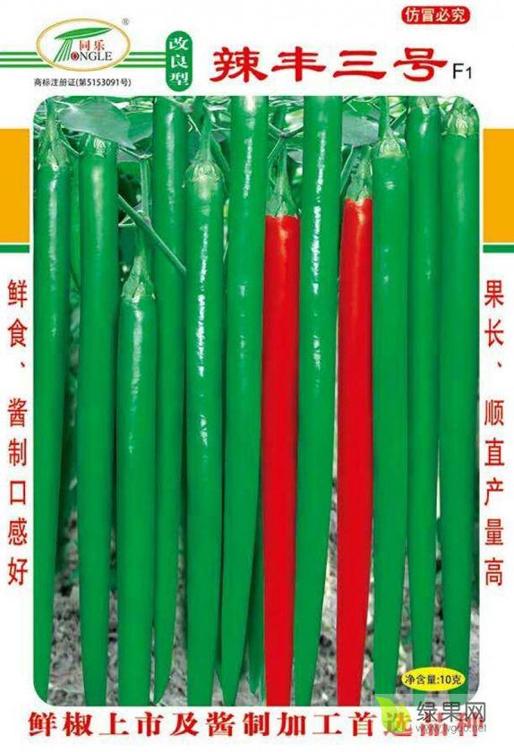 改良型辣丰三号线椒条椒辣椒种子