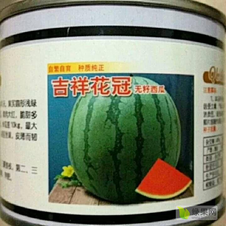 供应花无籽西瓜种子