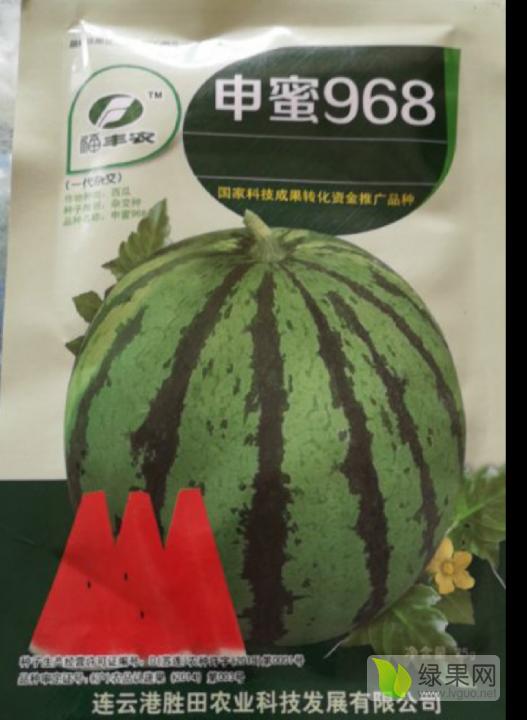 供应申蜜968西瓜种子