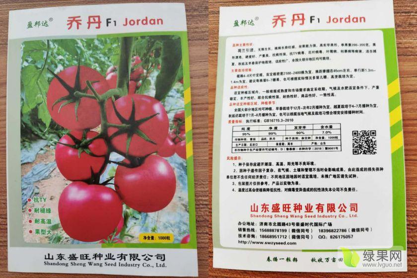 精品大果型硬粉番茄,耐熱 抗病