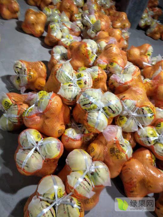 亚博-琯溪蜜柚即将上市,先报价下其他地方的行情!