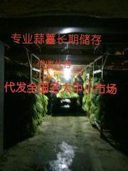https://lgpic.com/litimg/201908/24/99771_BSWOai_s.jpg