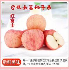 宁夏中卫市富硒苹果大量上市