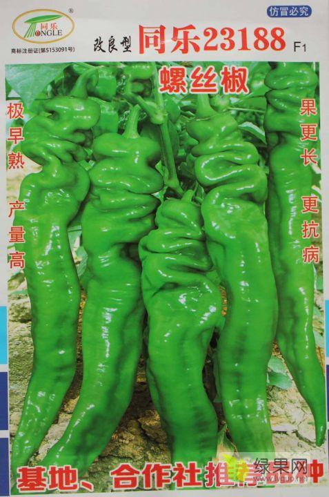 同乐23188螺丝椒龙椒辣椒种子