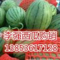 山东潍坊西瓜 早春红玉西瓜2k西瓜大量供应