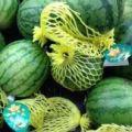 低价出售现摘西瓜