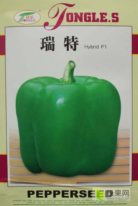 瑞特菜椒高产大果甜椒青椒辣椒种子